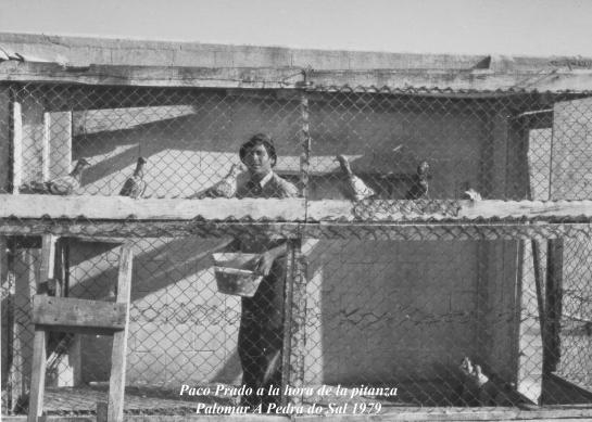 Paco Prado, Palomar A Pedra do Sal 1979