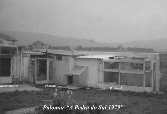 Palomar A Pedra do Sal 1979